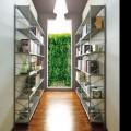 shelves-socrate