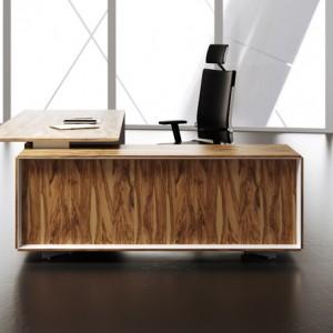 Ceo executive desk